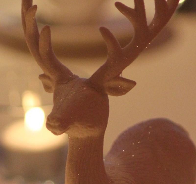 heaton-house-christmas-party-2013
