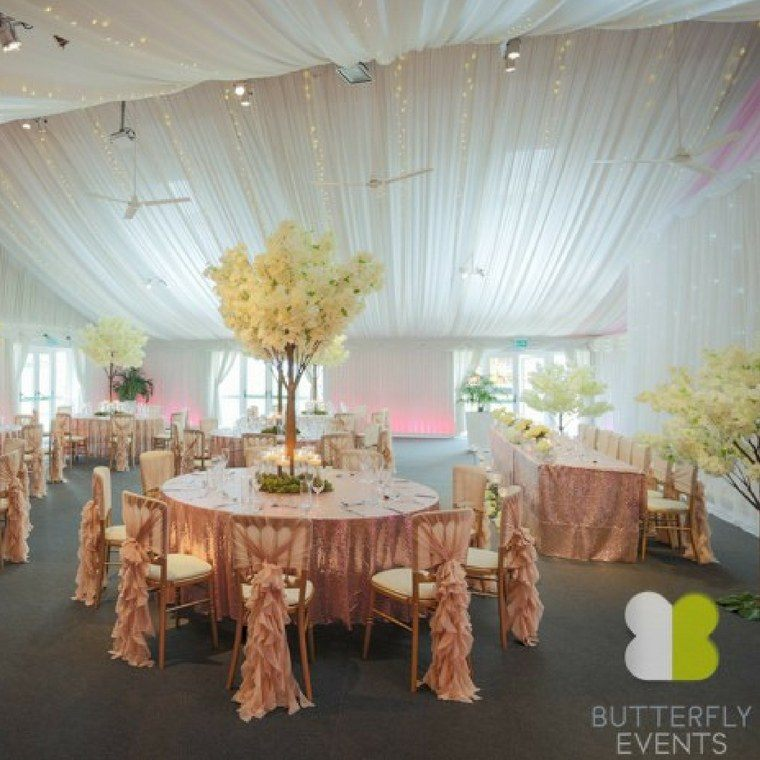 Butterfly Events - Heaton House Farm Supplier